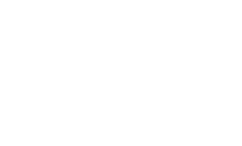 The Bilingual Canadian International School